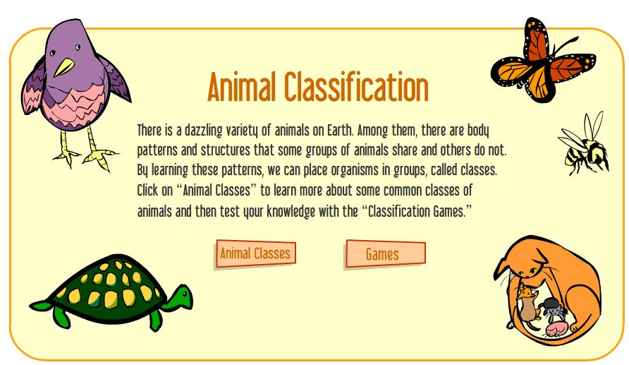 Vertebrate Animals Games Animal Classification Game